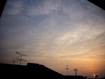 Pic20060620b