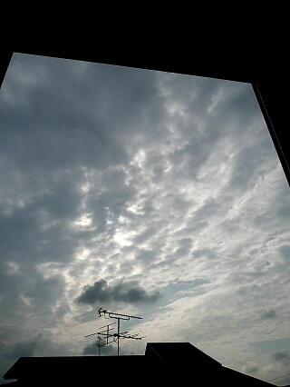 Pic20070329b